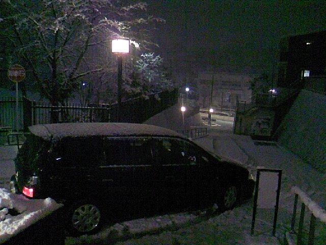 雪 (・_・;)