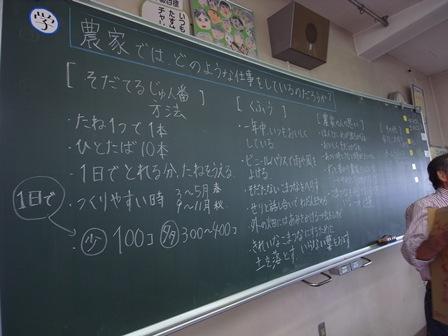 Syokuikuminamihon01